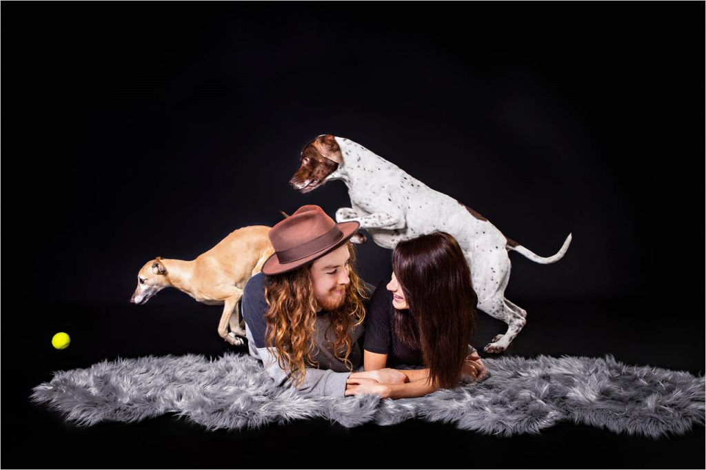 Jo Howell Pet Photography Dogs Black116