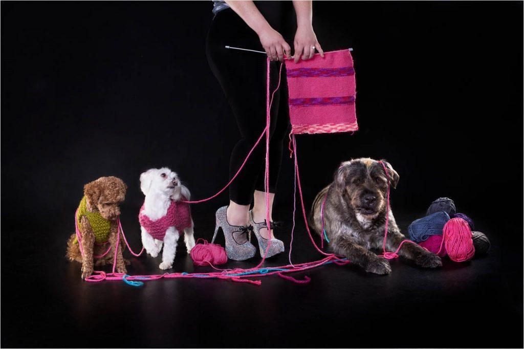 Jo Howell Pet Photography Dogs Black121