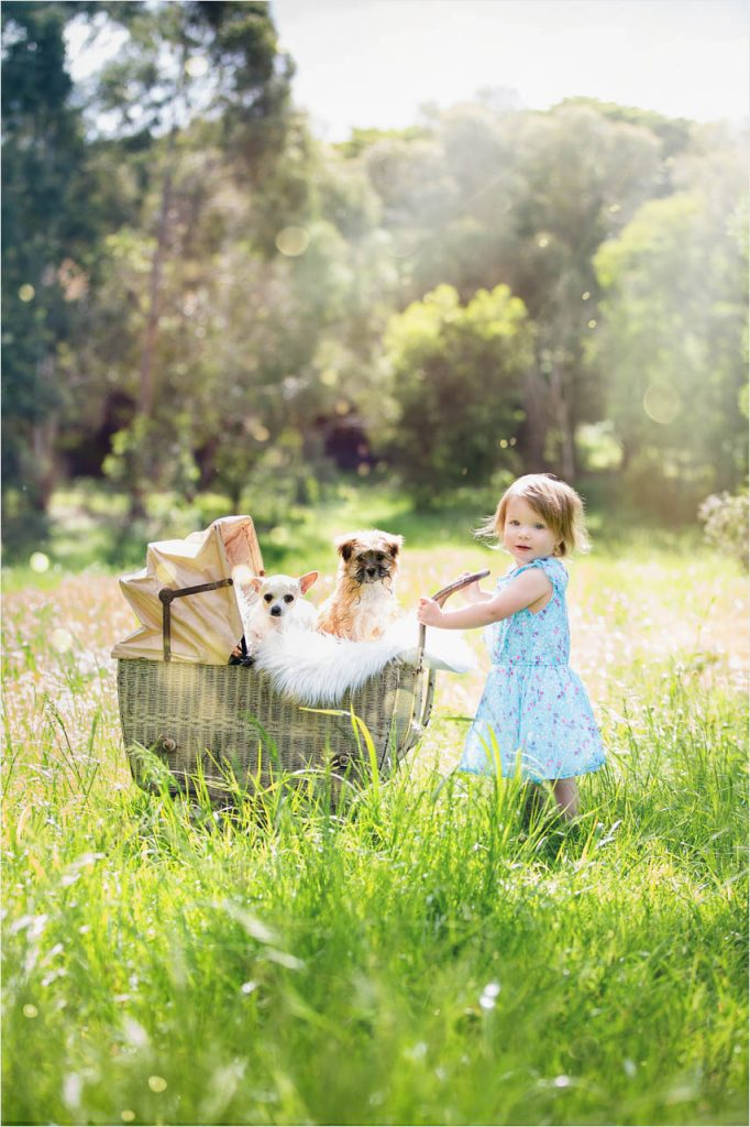 Jo Howell Pet Photography Grass is Greener104