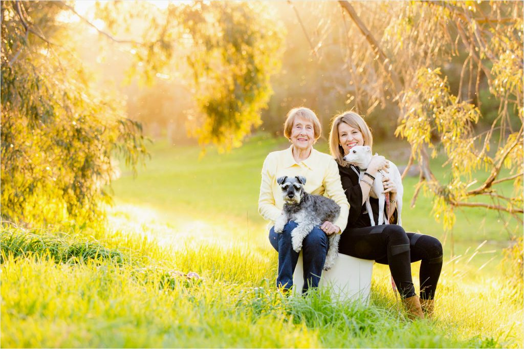 Jo Howell Pet Photography country lane101