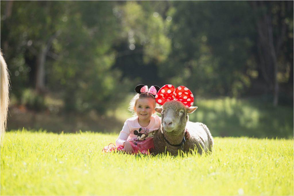 Jo Howell Pet Photography farm119