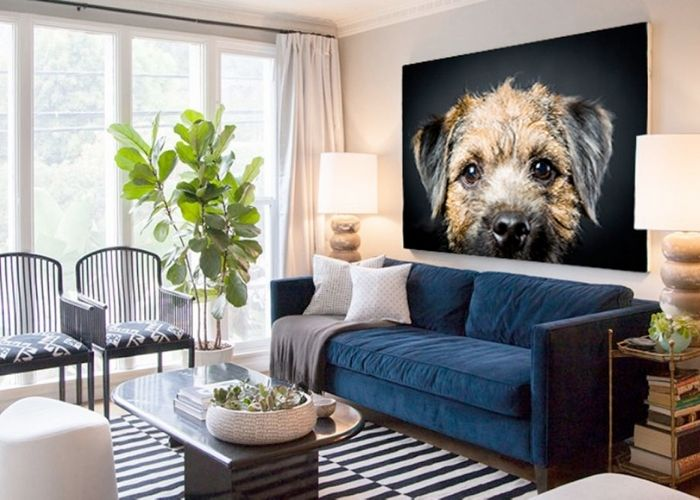 Create Customised Art with Melbourne Pet Photography